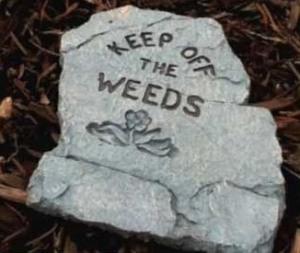 keepoffweeds