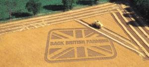 backbritfarm