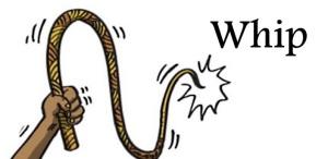 whip-4